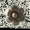 NW-62DD-80mm-dia-Daisy